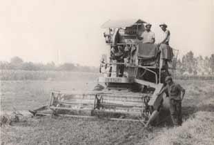 Trattori tonetto vendita trattori usati